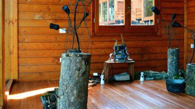 Silvae suoni dal bosco